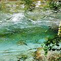 Photos: 季節感プチ無視シリーズ~田代池から大正池へ