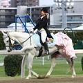 写真: 川崎競馬の誘導馬05月開催 誕生日記念レースVer-13-large