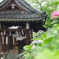 阿倍野神社で