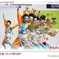 写真: 夢想漣えさし_41 - かみす舞っちゃげ祭り2011