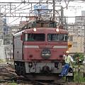 日本の電車たち