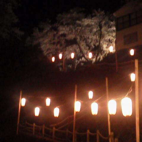 入道坂もライトアップ