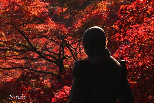 絶景かな  by 東郷元帥