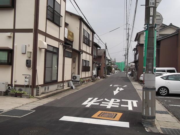 ひばり2012.05 (03)