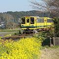 いすみ鉄道 ムーミン列車2