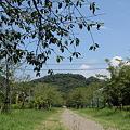 写真: 新田神社
