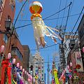 写真: 七夕祭りと阿波踊りとスカイツリー