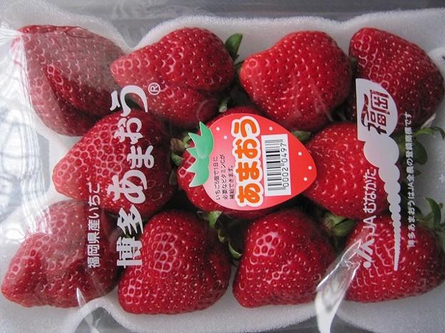 Photos: イチゴあまおう