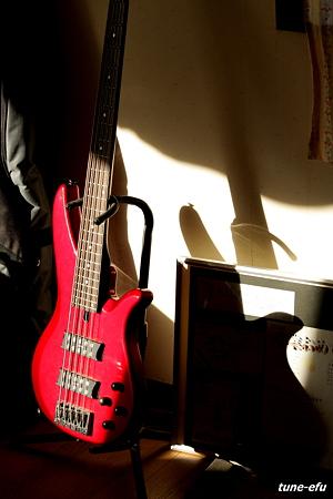 五弦ベースに朝の光