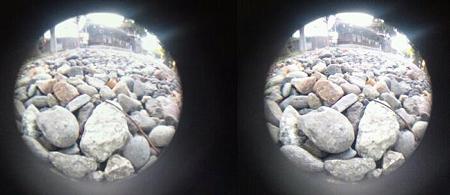 3D魚眼小石