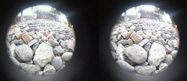 写真: 3D魚眼小石