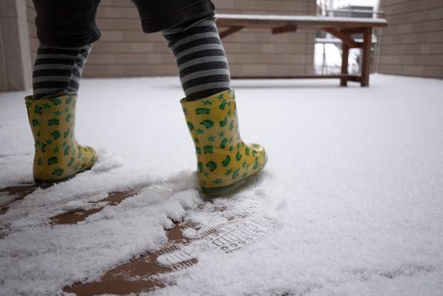 福岡に雪が降った日