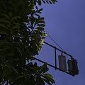 Photos: 2011-07-15の空