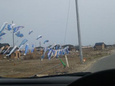 Photos: 知らずにいつも通る 大曲浜への道に、いぎなし鯉のぼりあって ビビったげどさ(汗)