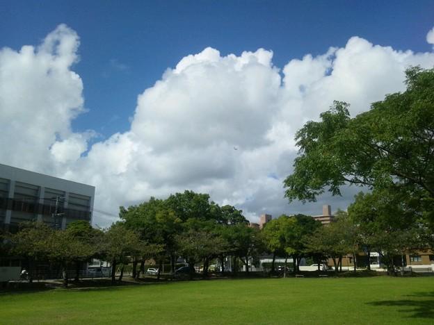 Photos: 良い天気だ
