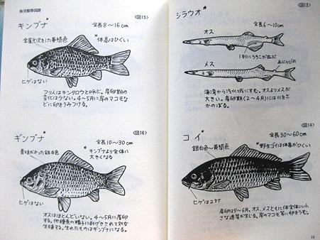 魚貝類等図譜
