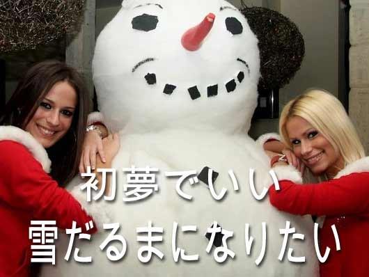 Photos: 2269_snowman