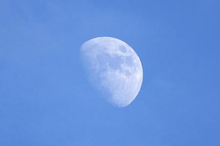 昼に浮かぶ月