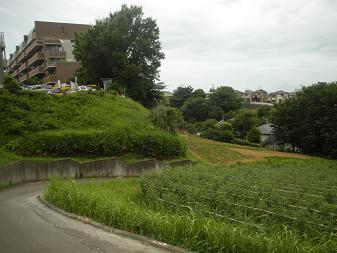 斉藤農園2
