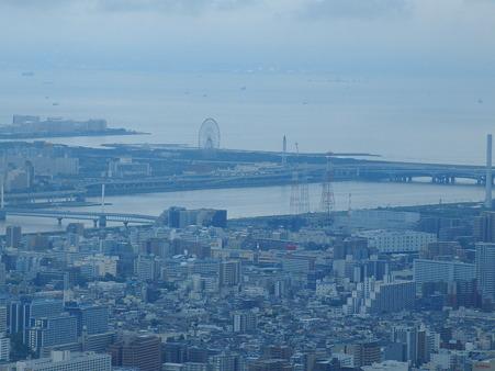 CIMG6554 葛西臨海公園