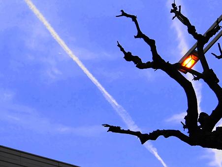 錦通りの空と光景