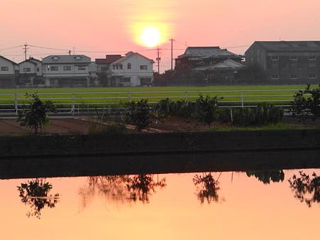 故郷の夕陽2