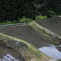 Photos: 棚田の水の音
