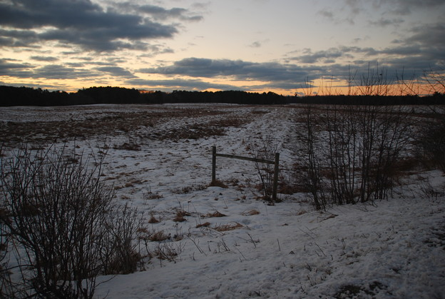 The Field with Snow 1-28-12