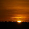 Photos: The Sunset 2-19-12