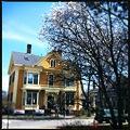 写真: Pumpkin House 4-14-12