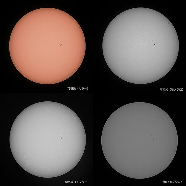 可視光、紫外線、Hαによる太陽