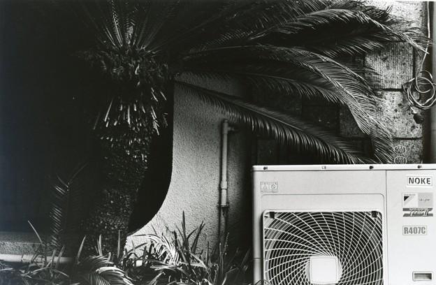 darkroom #4