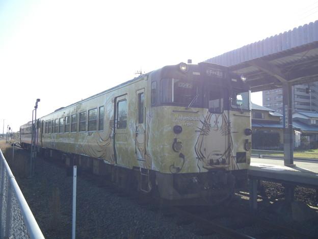 Photos: 鬼太郎電車