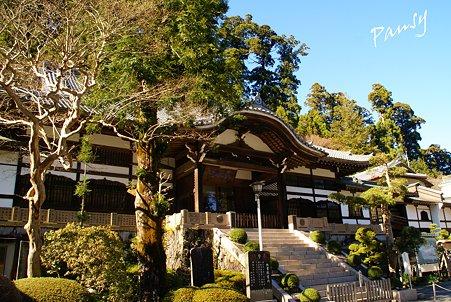 書院・・大雄山最乗寺さんぽ・・34