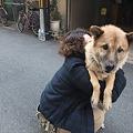 Photos: 抱っこされる仁さん