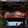 Photos: 鎌倉妙本寺の二天門、化粧直し!