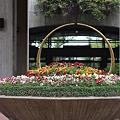 Photos: 県庁の花壇