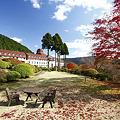Photos: 秋の庭園と外観