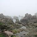 Photos: 110511-33室戸岬の海岸