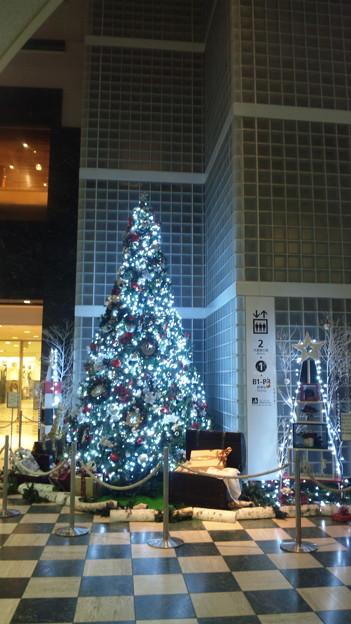 聖路加ガーデン2011クリスマスツリー P-2