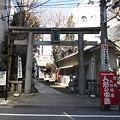 120326浅草橋、銀杏岡八幡