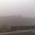 Photos: 20111105の朝