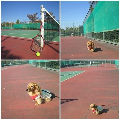 20111029 テニス