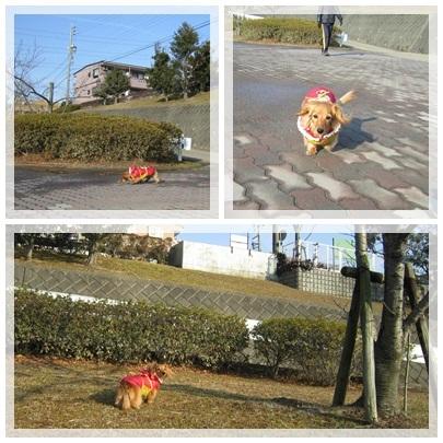 20120122 お散歩2