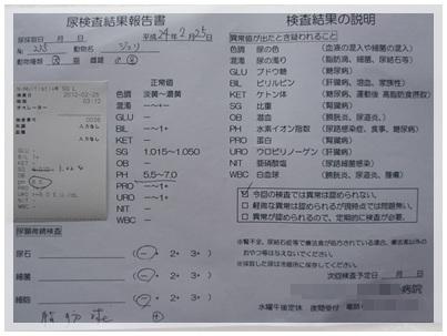 20120225 おちっこ検査 結果