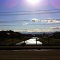 秋の浅野川  朝日を浴びて^^