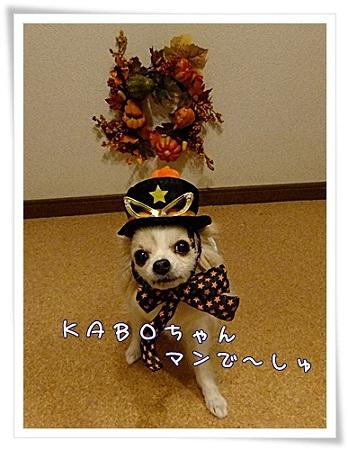 kaboちゃんマン