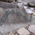 Photos: 蛇石