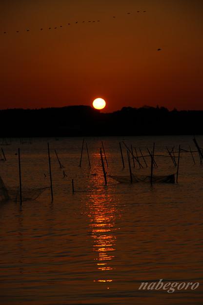 印旛沼の朝