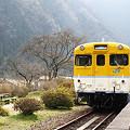 Photos: 20120320安野花の駅公園02